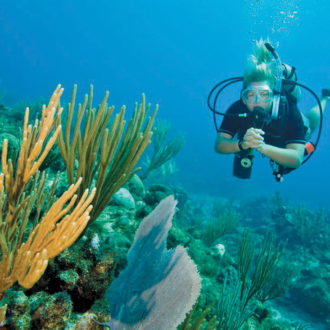 Women and Scuba Diving