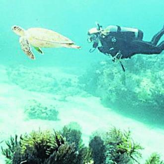 Women & Scuba Diving