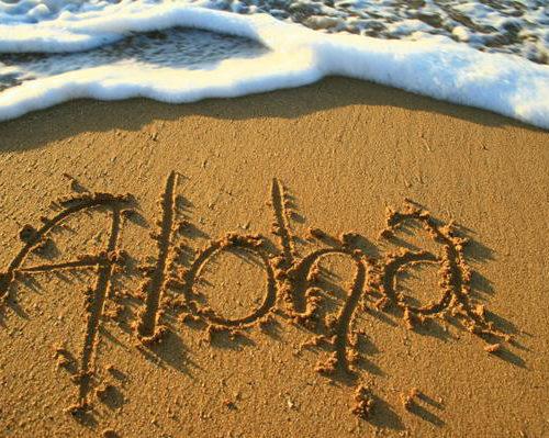 Aloha Means Hello, Goodbye & I Love You.