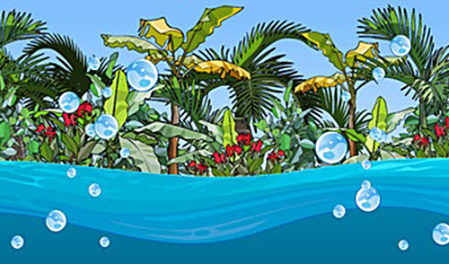 Key West Bubble Land