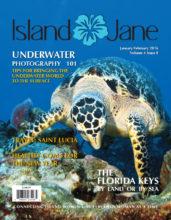 January 2016 Island Jane