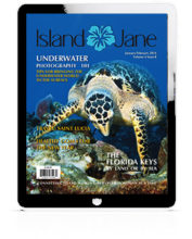 January 2016 Island Jane Magazine