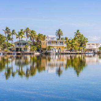 The Island Vibe Life