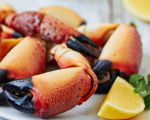 Florida Keys Stone Crabs